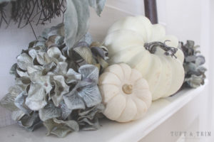 5 Tips for creating an elegant fall home.